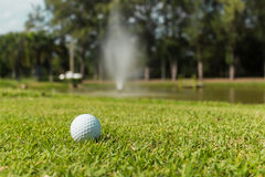 Golf ball on green grass background Royalty Free Stock Images