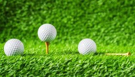 Golf ball with green grass background, on tee closeup. Stock Image