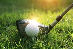 Golf ball on green grass in beautiful golf course at sunset background. Golf club and golf ball on green grass in the evening golf course with sunshine in royalty free stock photography