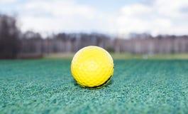 Golf ball on green grass. Blue sky Royalty Free Stock Photos