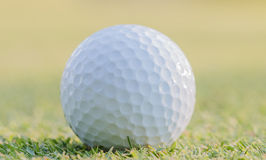 Golf ball on green grass. Golf ball on green grass with blur background Stock Photography