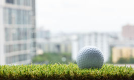 Golf ball on green grass with building background Stock Photo