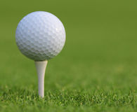 Golf ball on green grass. Closeup Royalty Free Stock Images