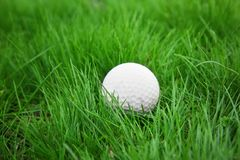 Golf ball on green grass. Closeup Stock Images