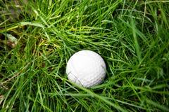 Golf ball on green grass. Closeup Royalty Free Stock Photo