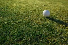 Golf ball on green grass. Closeup view Stock Image