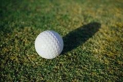Golf ball on green grass. Closeup view Stock Photography