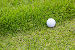 Golf ball and green grass Stock Photography