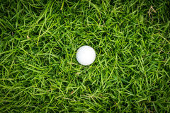 Golf ball on green grass. Stock Photo