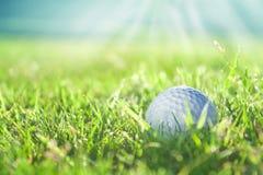 Golf ball on green grass course, closeup shot. Golf ball on green grass course in sunlight, closeup shot Royalty Free Stock Image