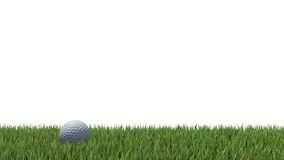 Golf ball on green 04 Stock Photography