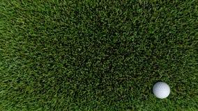 Golf ball on green 05. Golf ball on green grass 3D render Royalty Free Stock Photos