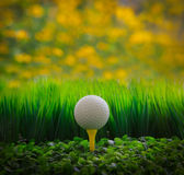 Golf ball on green grass field and yellow blur bac. File of golf ball on green grass field and yellow blur background stock photography