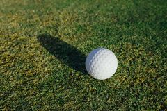 Golf ball on green grass. Closeup view Royalty Free Stock Images