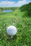 Golf ball on the green grass. Stock Photography