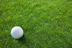 Golf ball on the green grass. Royalty Free Stock Images
