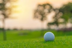 Golf ball on green grass ready to be shot at golfcourt. Golf ball on green grass ready to be shot at golf court stock image