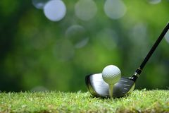 Golf ball on green grass ready to be struck on golf course stock photo