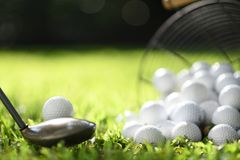 Golf ball on green grass ready to be struck for practice stock photos