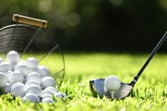 Golf ball on green grass ready to be struck for practice royalty free stock photos
