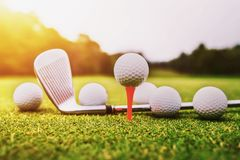 Golf ball on green grass with sunset. Course sport club golfing leisure activity putting hitting lifestyle outdoor play game training background golfer hole royalty free stock image
