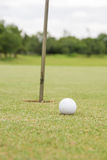 Golf ball on the green. Green hobby  hole round sand sport Stock Image