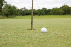Golf ball on the green. Green hobby  hole round sand sport Stock Photos