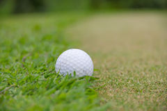 Golf ball. Green holiday lifestyl playground rough Stock Image