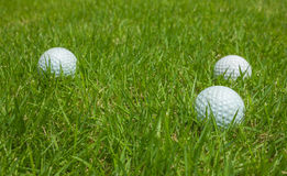 Golf ball on a green lawn. Golf ball on a green lawn Background royalty free stock photos