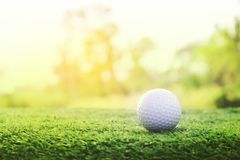 Golf ball is on a green lawn in a beautiful golf course. With morning sunshine.Ready for golf in the first short.Sports that people around the world play during stock photo