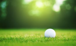 Golf ball is on a green lawn in a beautiful golf course. With morning sunshine.Ready for golf in the first short.Sports that people around the world play during stock images