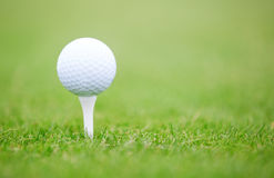 Golf ball. On a green lawn. Close-up photo royalty free stock images