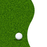 Golf ball on a green lawn Stock Image
