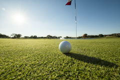Golf ball on green low angle Stock Photo