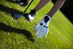 Golf ball on green meadow, driver Royalty Free Stock Images