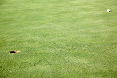 Golf Ball on Green near Hole Stock Photo