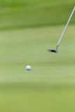 Golf Ball Green Putting Royalty Free Stock Photos