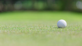Golf ball on the green. And selective focus on 16:9 picture side royalty free stock images