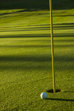 Golf Ball on Green at Sunrise Stock Photo