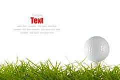 Golf ball on green tee Stock Image