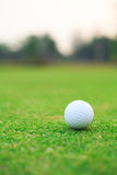 Golf ball on the green Royalty Free Stock Photography