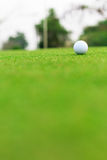 Golf ball on the green Stock Image