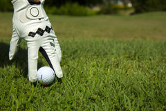 Golf. Ball in hand, gloves and grass Royalty Free Stock Photo