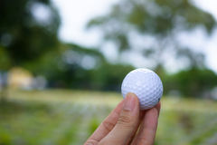 Golf ball in his hand. In park Royalty Free Stock Photo