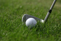 Golf ball iron grass Stock Photo