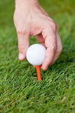 Golf ball and iron on green grass detail macro Stock Image