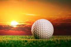 Golf ball on the lawn Stock Photography