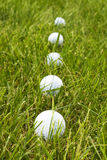 Golf Ball Lineup Stock Image