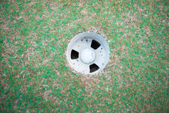 Golf ball on lip of cup. Golf-ball on course for sporting clubs Royalty Free Stock Photo
