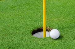 Golf ball on lipon the green Royalty Free Stock Images